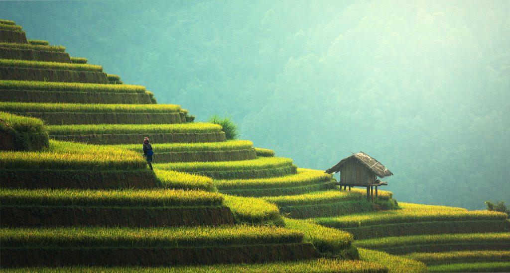 טיול אחרי לימודים אקדמיים לתאילנד